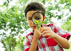 Curso Educação Ambiental