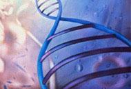 Curso Genética Veterinária