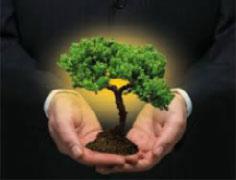 Pós-graduação em Contratações e Compras Sustentáveis - especialização lato sensu