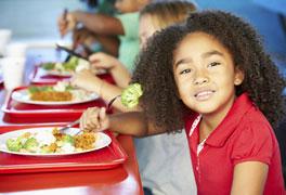 Curso Alimentação Escolar