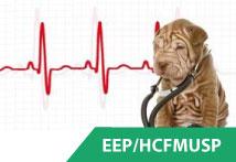 Básico de Eletrocardiografia para Veterinários