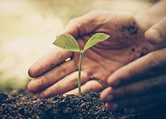 Curso Licenciamento Ambiental