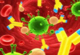 Pós-graduação em Microbiologia Básica e Clínica - Especialização lato sensu