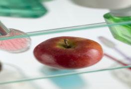 Pós-graduação em Nutrição Aplicada à Estética - Especialização lato sensu