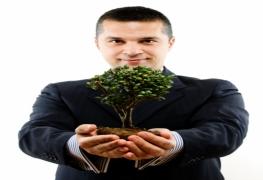 Pós-graduação em Sustentabilidade nas Empresas - Especialização lato sensu