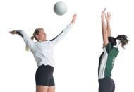 Voleibol: Iniciação e Formação de Equipes